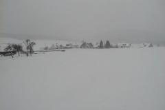 Winter_009